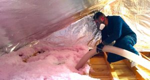 insulation-cleanup
